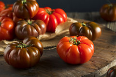 Raw Organic Red and Brown Heirloom Tomatoes Royalty Free Stock Images