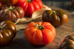 Raw Organic Red and Brown Heirloom Tomatoes Stock Photos