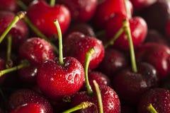 Raw Organic Red Cherries Stock Photo