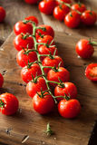 Raw Organic Red Cherry Tomatoes Stock Images