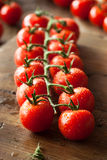 Raw Organic Red Cherry Tomatoes Royalty Free Stock Photos