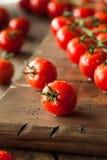 Raw Organic Red Cherry Tomatoes Stock Photos