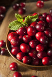 Raw Organic Red Cranberries Royalty Free Stock Photography