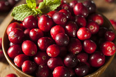 Raw Organic Red Cranberries Royalty Free Stock Photos