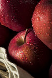 Raw Organic Red Delicious Apples. Ready to Eat Royalty Free Stock Photos
