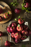 Raw Organic Red Delicious Apples. Ready to Eat Royalty Free Stock Photo