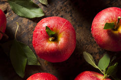 Raw Organic Red Gala Apples. Ready to Eat Stock Photo