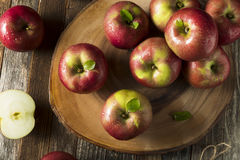 Raw Organic Red Mcintosh Apples. Ready for Eating Stock Photos
