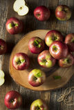 Raw Organic Red Mcintosh Apples. Ready for Eating Royalty Free Stock Photos
