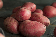 Raw Organic Red Potatoes Stock Images