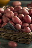 Raw Organic Red Potatoes Royalty Free Stock Photo