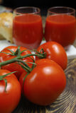 Raw Organic red Tomato Juice with salt, basil and bread Stock Image