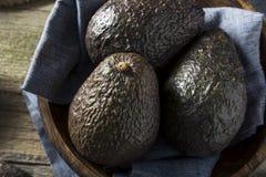 Raw Organic Ripe Avocados Stock Image