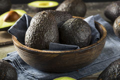 Raw Organic Ripe Avocados Royalty Free Stock Image