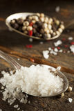 Raw Organic Sea Salt and Pepper Stock Photo