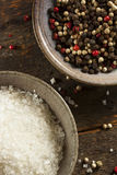 Raw Organic Sea Salt and Pepper Royalty Free Stock Photography
