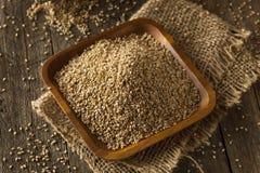 Raw Organic Sesame Seeds Royalty Free Stock Photo
