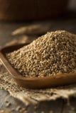 Raw Organic Sesame Seeds Royalty Free Stock Images