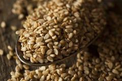Raw Organic Sesame Seeds Royalty Free Stock Photos