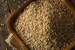 Raw Organic Sesame Seeds Stock Images