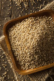 Raw Organic Sesame Seeds Royalty Free Stock Image