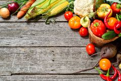 Raw organic set of fresh vegetables on a wood background. Autumn harvest from the garden Royalty Free Stock Photography