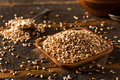 Raw Organic Spelt Grain Royalty Free Stock Images