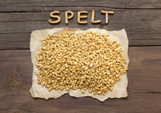 Raw Organic spelt grain with wooden word Royalty Free Stock Photography