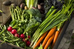 Raw Organic Spring Farmers Market Box. With Asparagus Broccoli Kale Snow Peas and Green Onions Royalty Free Stock Image