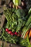 Raw Organic Spring Farmers Market Box. With Asparagus Broccoli Kale Snow Peas and Green Onions Royalty Free Stock Photos