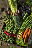 Raw Organic Spring Farmers Market Box. With Asparagus Broccoli Kale Snow Peas and Green Onions Royalty Free Stock Photography