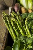 Raw Organic Spring Farmers Market Box. With Asparagus Broccoli Kale Snow Peas and Green Onions Stock Photo