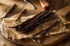 Raw Organic Vanilla Beans Stock Photography
