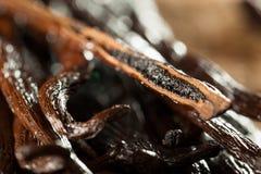Raw Organic Vanilla Beans Stock Photos