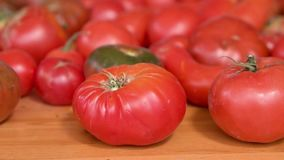 Raw organic vegetables, delicious tomatoes on wooden table, dolly shot. Raw organic vegetables, delicious tomatoes on wooden table, dolly shot stock footage