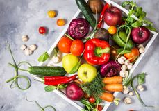Raw organic vegetables with fresh ingredients for healthily cooking in white tray on concrete background. Top view Stock Photos