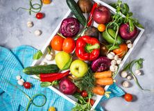 Raw organic vegetables with fresh ingredients for healthily cooking in white tray on concrete background. Top view Royalty Free Stock Photography