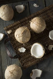 Raw Organic White Coconuts Royalty Free Stock Image