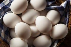 Raw Organic White Eggs Royalty Free Stock Image