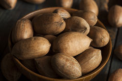 Raw Organic Whole Pecans Stock Photography