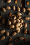 Raw Organic Whole Pecans Stock Images