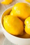 Raw Organic Yellow Lemons Royalty Free Stock Images