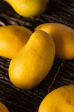Raw Organic Yellow Mangos Stock Photography