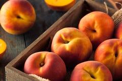 Raw Organic Yellow Peaches Stock Photos