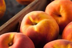 Raw Organic Yellow Peaches Royalty Free Stock Photo