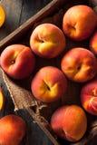 Raw Organic Yellow Peaches Stock Image