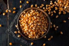 Raw Organic Yellow Popcorn Royalty Free Stock Photos