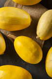 Raw Organic Yellow Spaghetti Squash Stock Photography