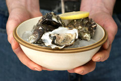 Raw oyster in a bowl with ice and lemon Stock Images
