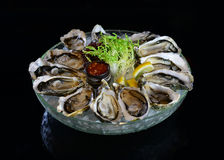 Raw oyster on ice with lemon Stock Image